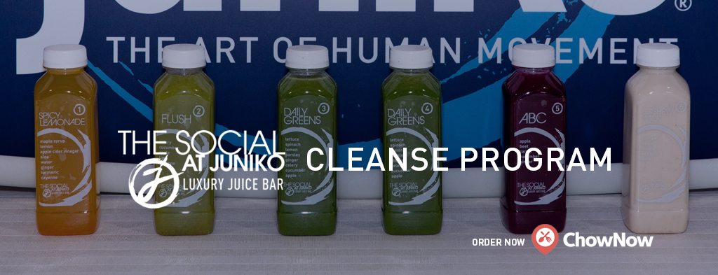 Cleanse3